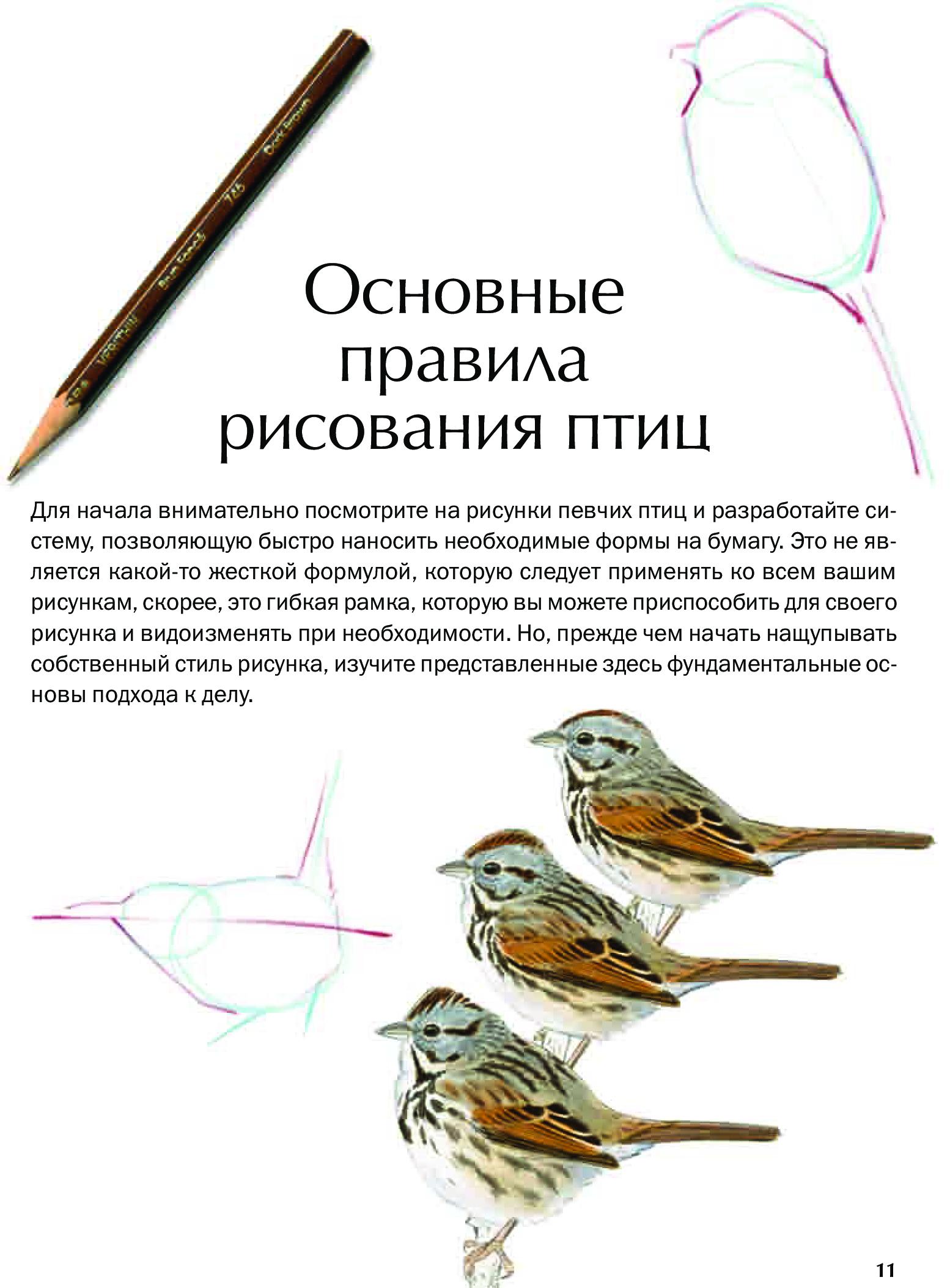 Мыслящие животные читать
