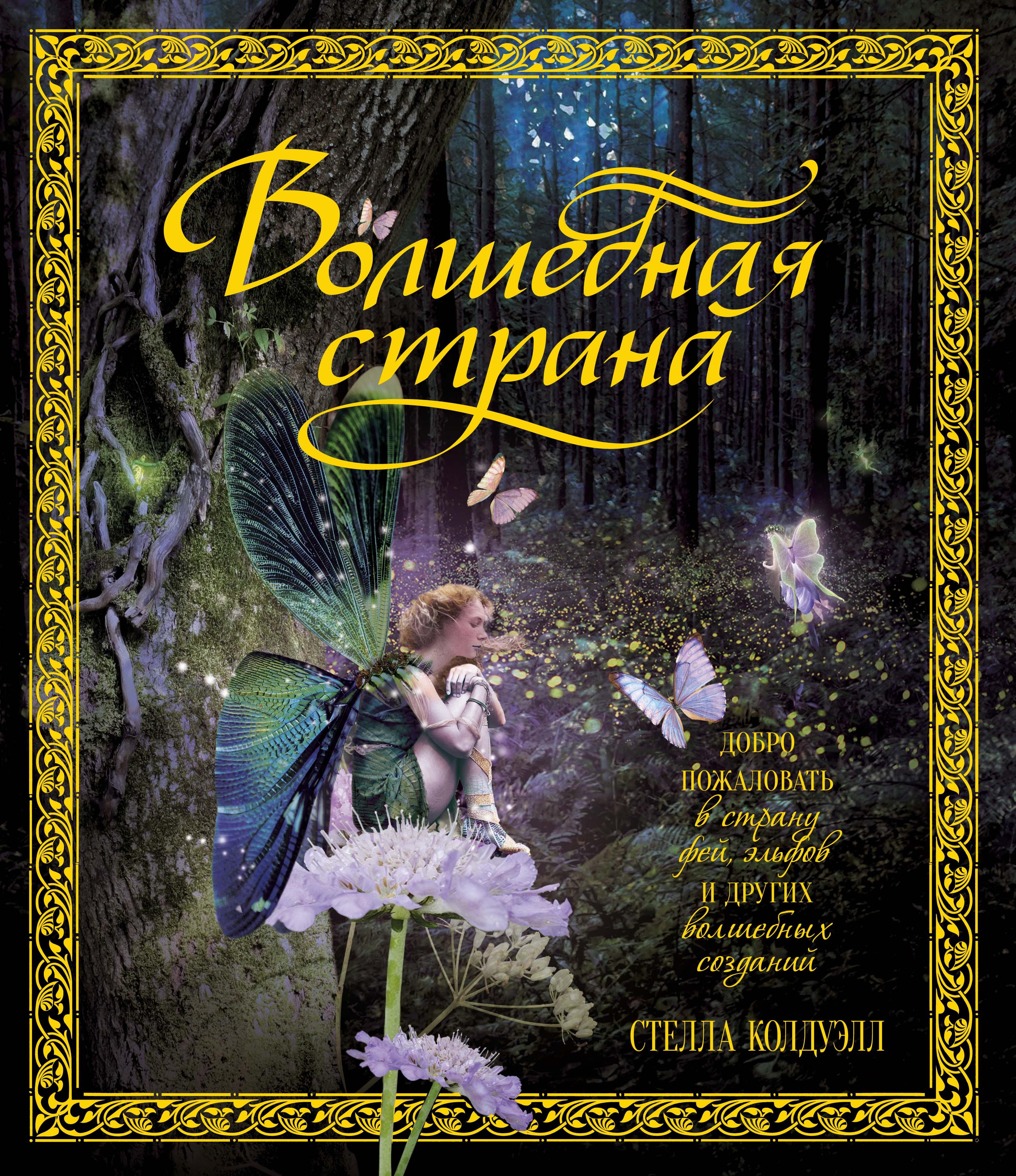 Волшебная страна книга скачать