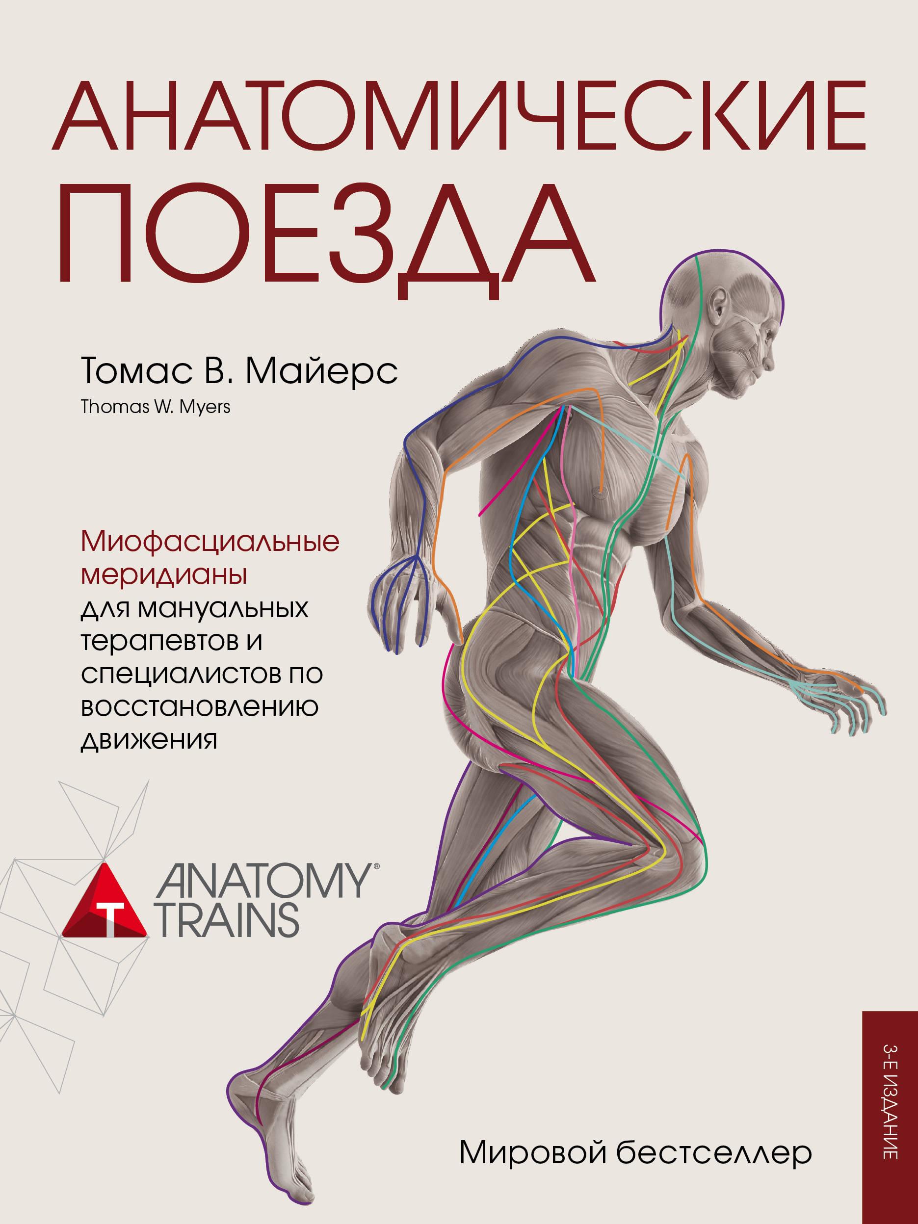 анатомия человека атлас раскраска