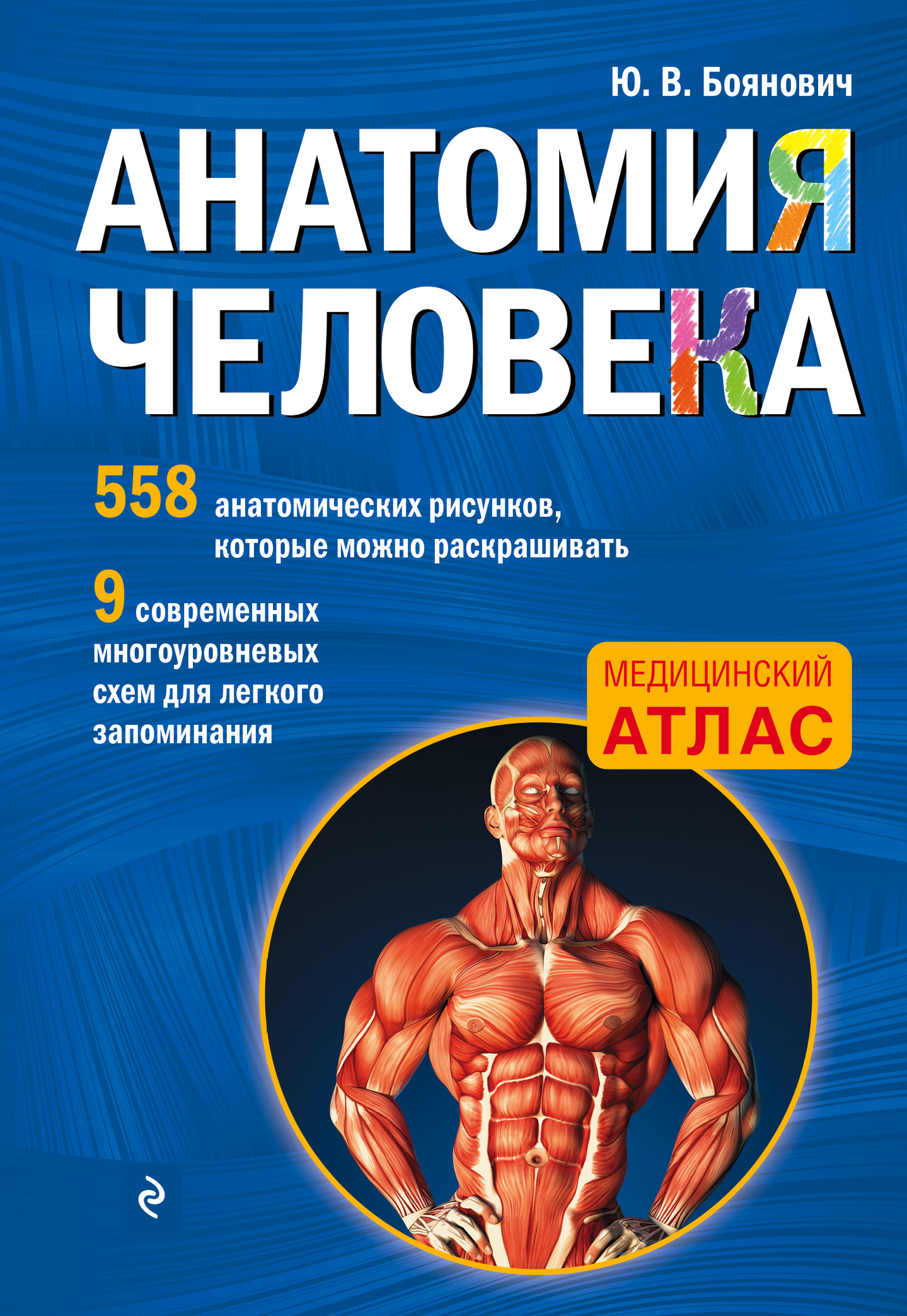 книга анатомия человека со страницами для раскрашивания ю