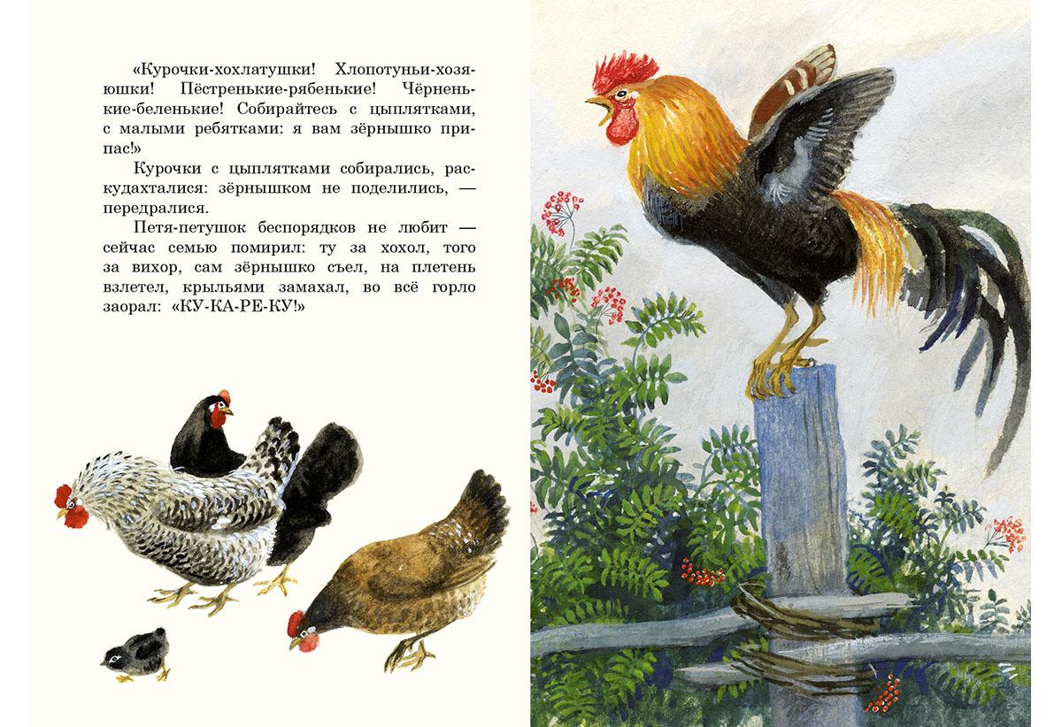 тактику иллюстрации к рассказам ушинского места раскладушка предоставляются