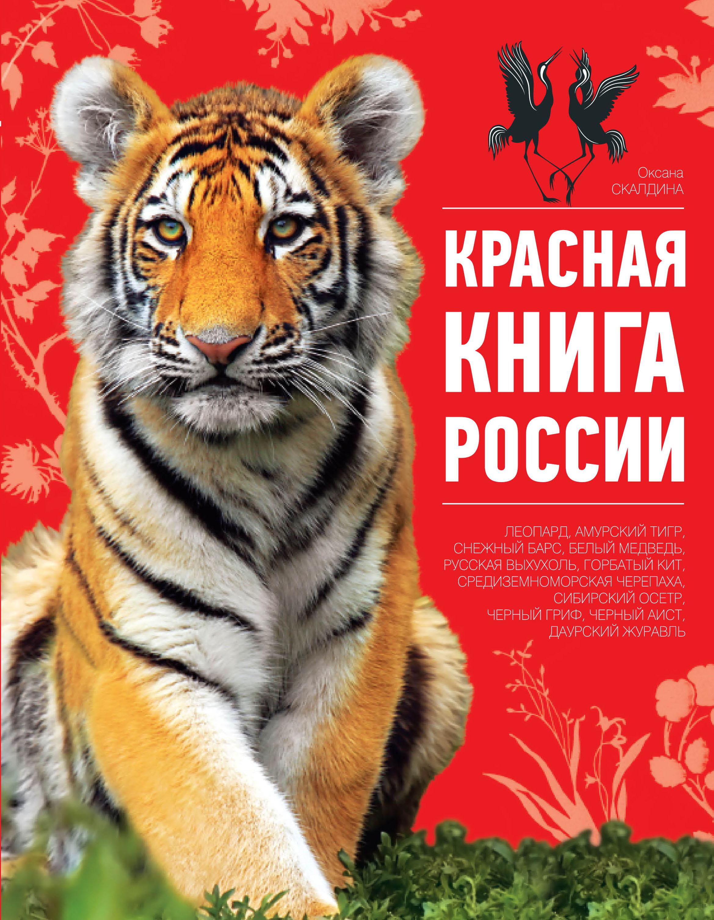 Где купить красную книгу россии талисман игр в сочи